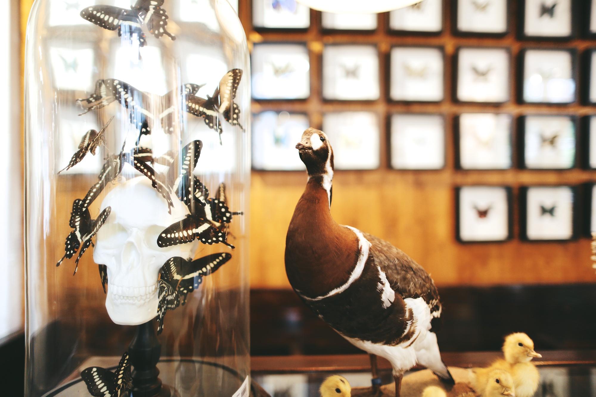 Hutspot Amsterdam ©Pulp Collectors 154