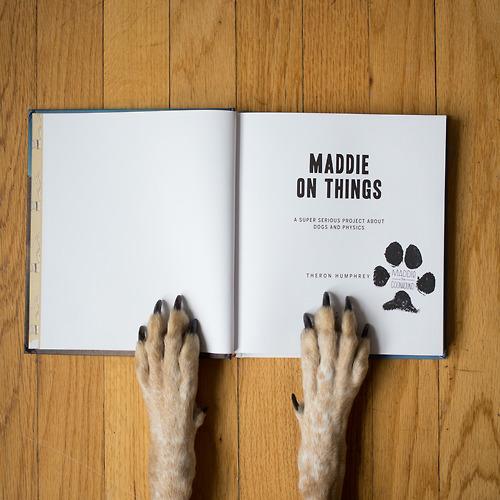 maddie_05