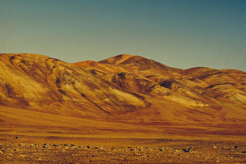 © CIRCA 1983 - CHILI 220