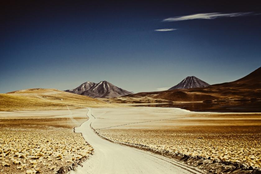 © CIRCA 1983 - CHILI 238