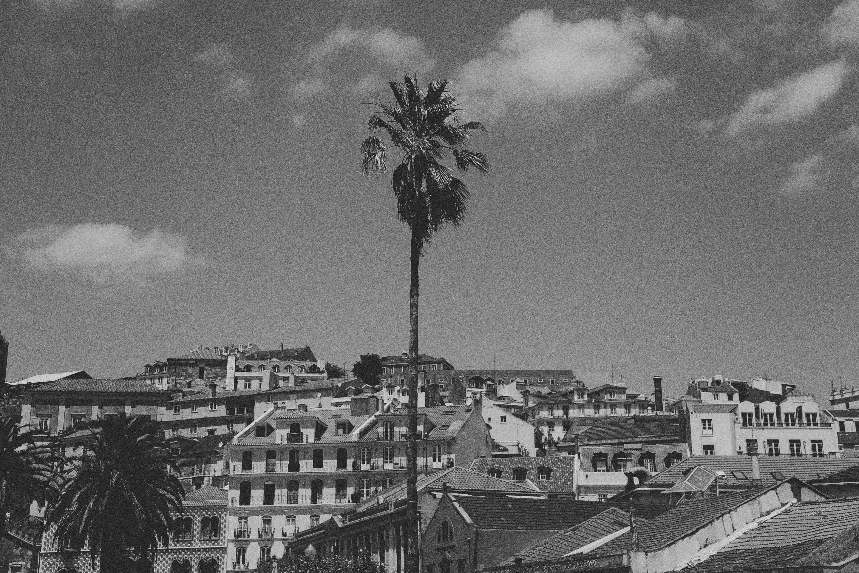 Lisbon © Pulp Collectors  2