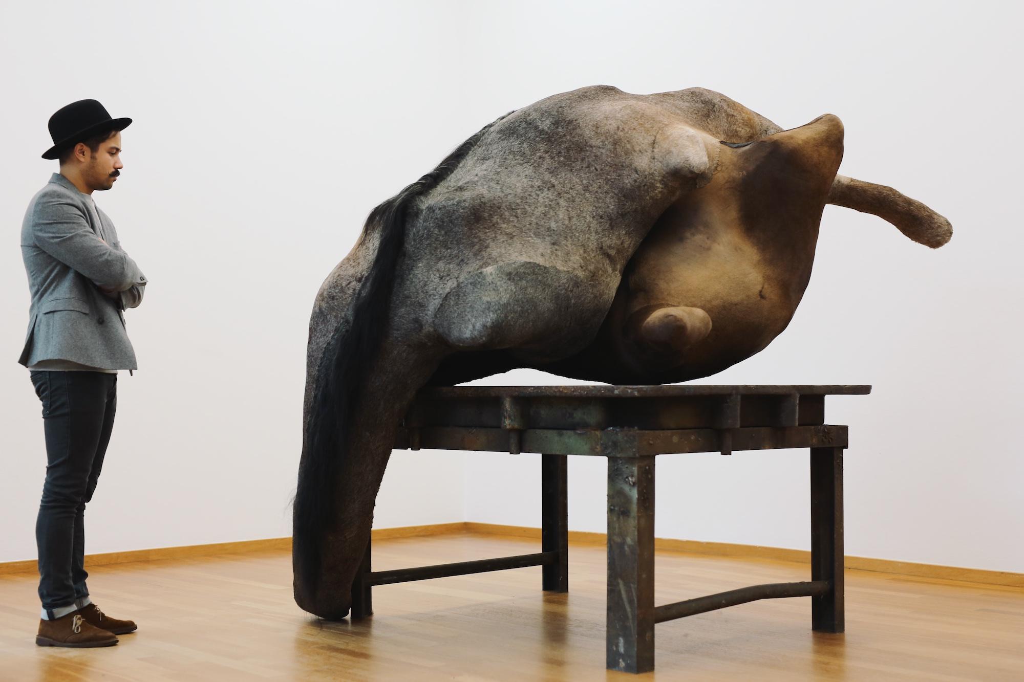BERLINDE DE BRUYCKERE at Gemeentemuseum © Pulp Collectors 2 (1)