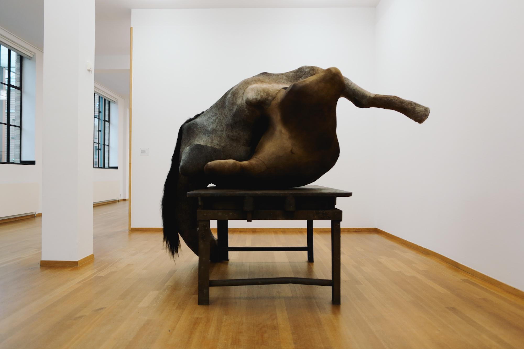 BERLINDE DE BRUYCKERE at Gemeentemuseum © Pulp Collectors 3 (1)