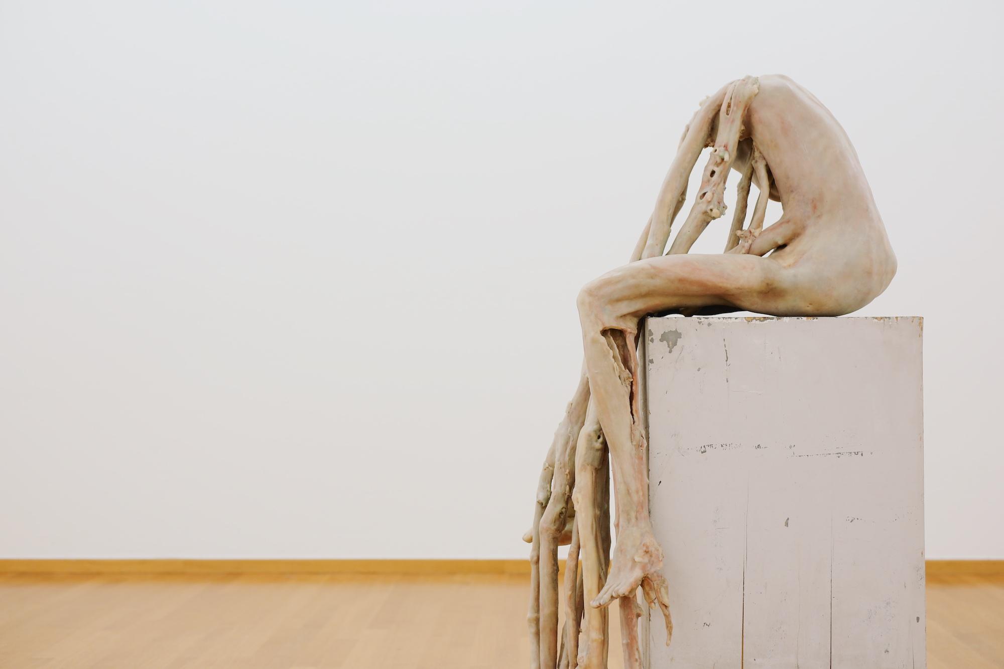 BERLINDE DE BRUYCKERE at Gemeentemuseum © Pulp Collectors 4 (1)