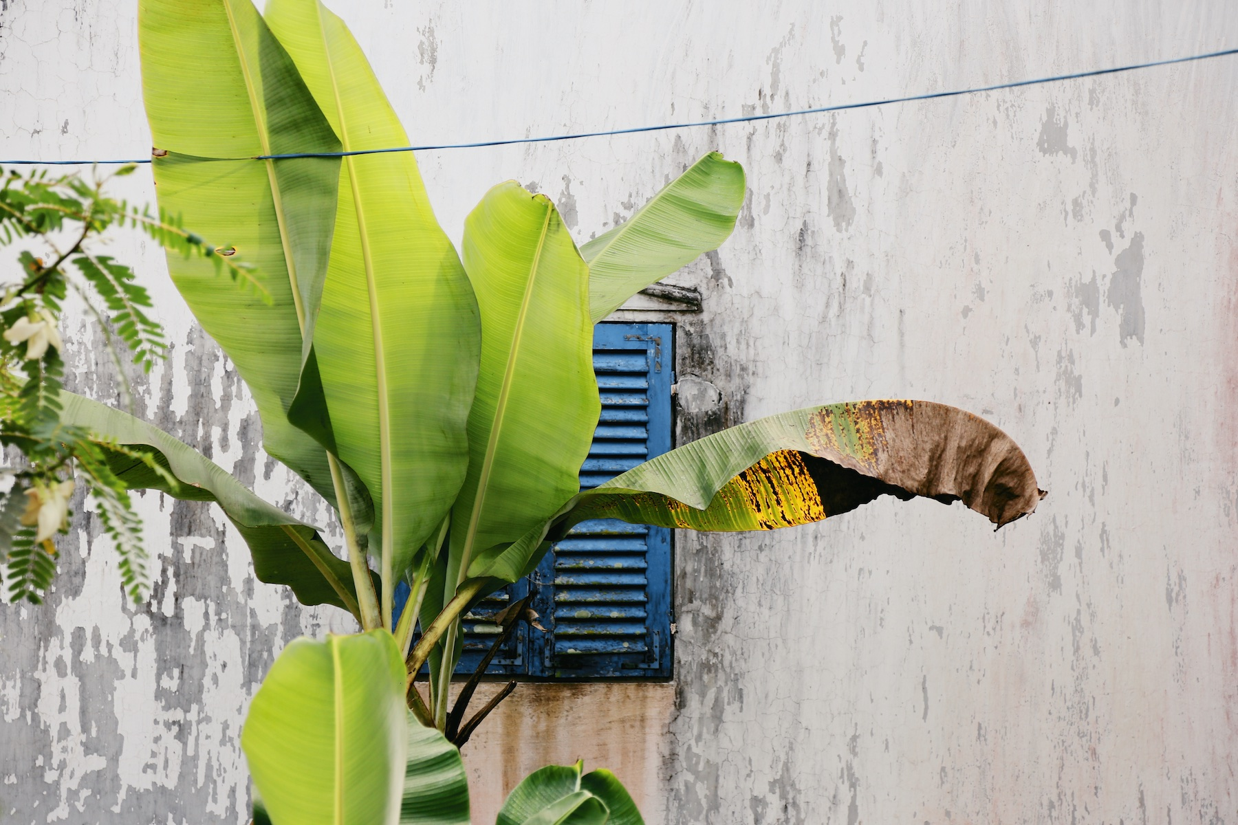 MEKONG DELTA VIETNAM © Manoah Biesheuvel 39