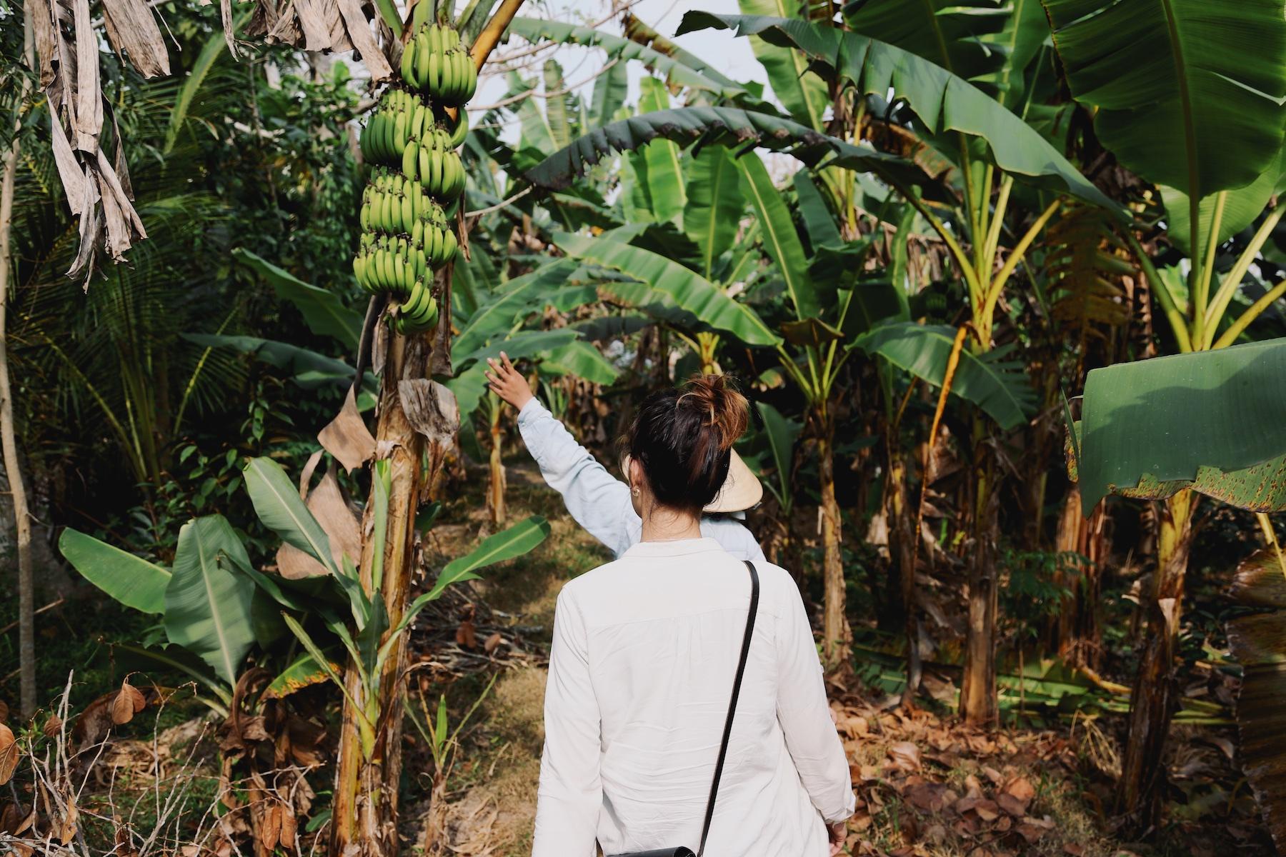 MEKONG DELTA VIETNAM © Manoah Biesheuvel 41